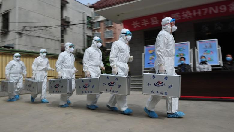 Gripe aviária H7N9 poderá se transformar em pandemia, aponta estudo