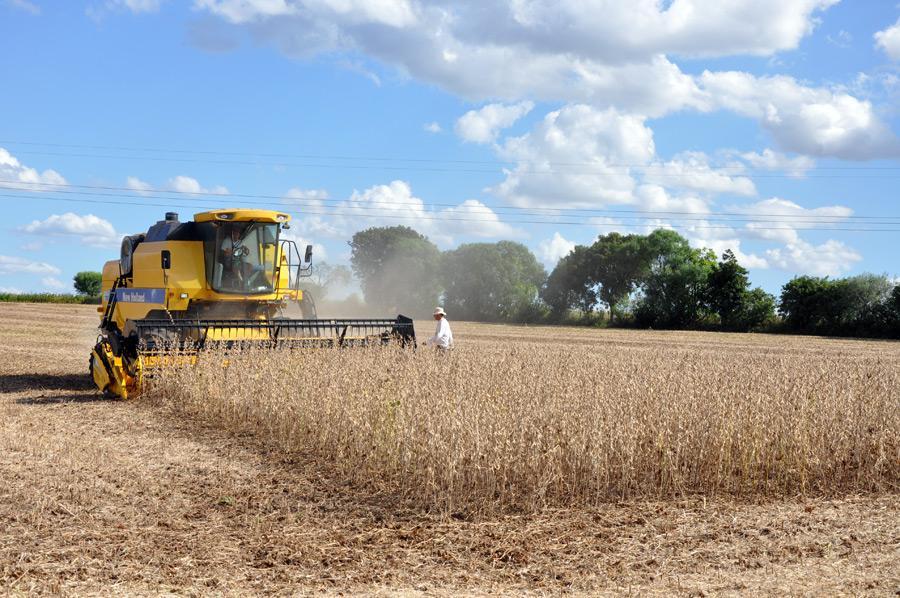 Colheita de soja no Amapá é destaque da edição de setembro de...