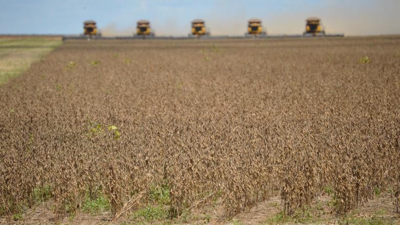 Mato Grosso acelera e leva colheita de soja a 3,8% no Brasil