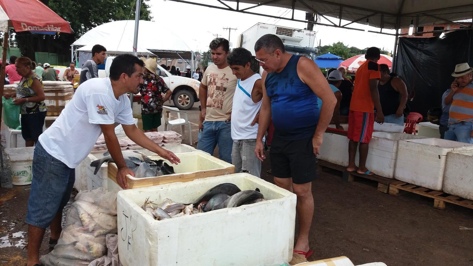 Projeto 'Peixe Popular' abre vagas para piscicultores em 9 municípios do AP