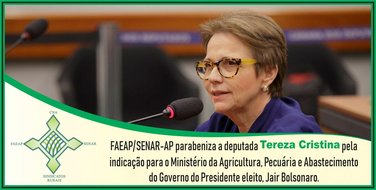 FAEAP/SENAR-AP parabeniza a deputada Tereza Cristina pela indicação para o Ministério da Agricultura