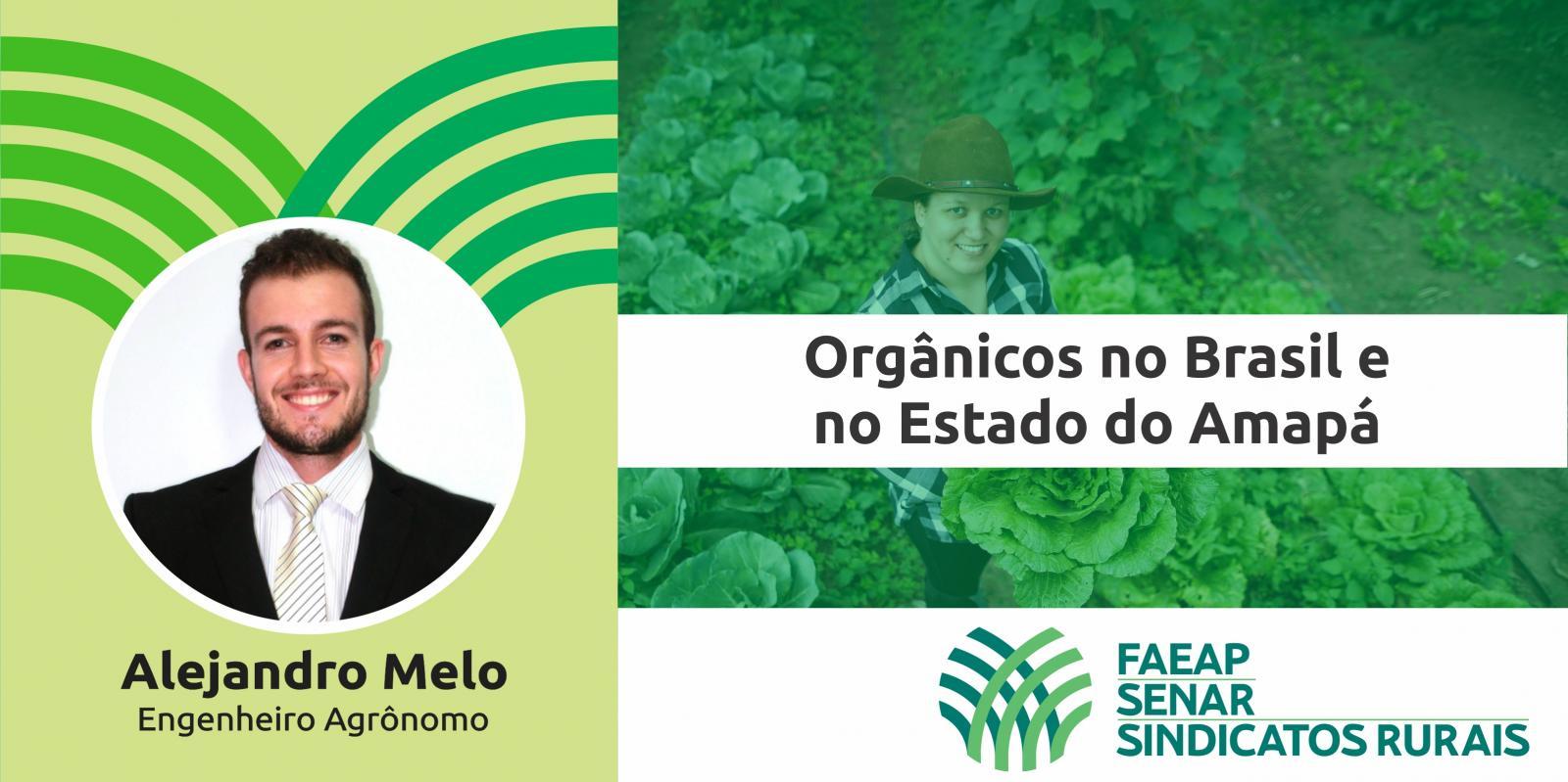Artigo: Orgânicos no Brasil e no Estado do Amapá