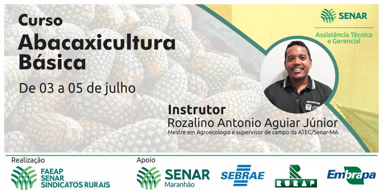 Produtores rurais atendidos pela ATeG do Senar/AP receberão formação na área da abacaxicultura